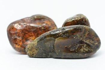 Zestaw trzech bryłek bursztynu bałtyckiego 56 g