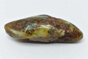 bursztyn bałtycki kolekcjonerski naturalny 56 g