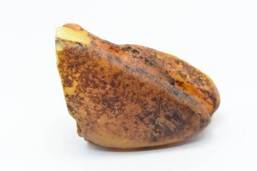 bursztyn bałtycki kolekcjonerski naturalny 161 g