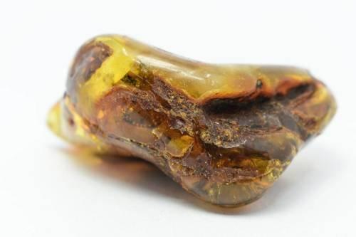 bursztyn bałtycki kolekcjonerski naturalny 59 g