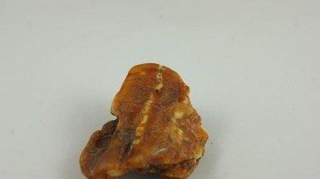bursztyn bałtycki półprodukt naturalny antyk old