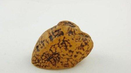 bursztyn bałtycki żółty niemodyfikowany muzealny 41,3 g